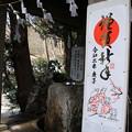 Photos: 浅間神社_山梨 D4653