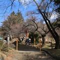 Photos: 浅間神社_山梨 D4648