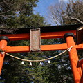Photos: 浅間神社_山梨 D4650