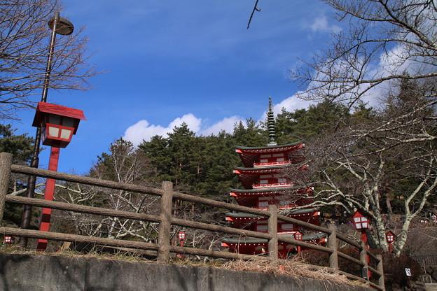 五重塔_新倉山 D4693
