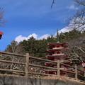 Photos: 五重塔_新倉山 D4693