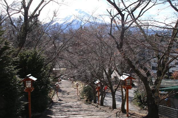 富士山_山梨 D4708