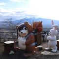 Photos: 狸とウサギ_山梨 D4749