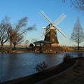 風車_公園 D4901