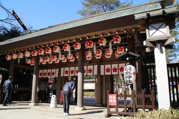 櫻木神社 D4917