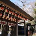 櫻木神社_野田 D5073