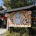 Photos: 櫻木神社_野田 D5075