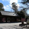Photos: 櫻木神社_野田 D5079