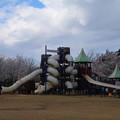 Photos: さくら公園 D5367