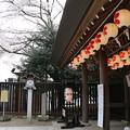 Photos: 櫻木神社_野田 D5435