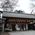 Photos: 櫻木神社_野田 D5434