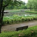 四季の里公園 D5933