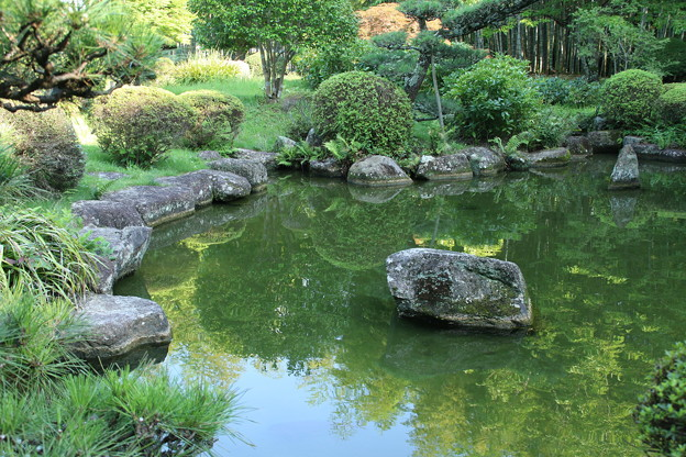 日本庭園_公園 D6411