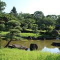 日本庭園_公園 D6413