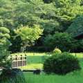 Photos: 日本庭園_公園 D6414