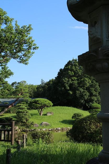日本庭園_公園 D6415