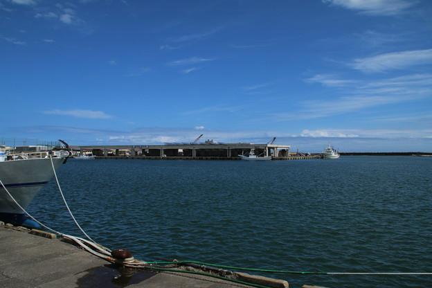 Photos: 漁港_那珂湊 D6730