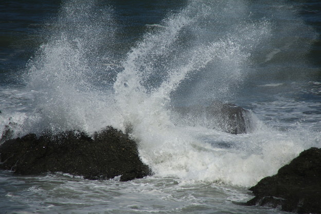 Photos: 大洗の海 D6767