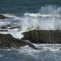 大洗の海 D6766