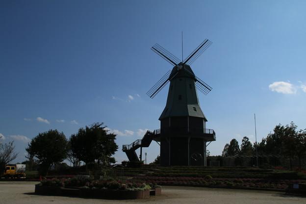 風車_公園 D6959
