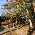 あけぼの山公園 D7384
