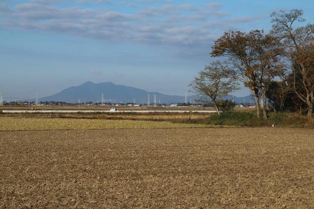 筑波山_散歩 D7407