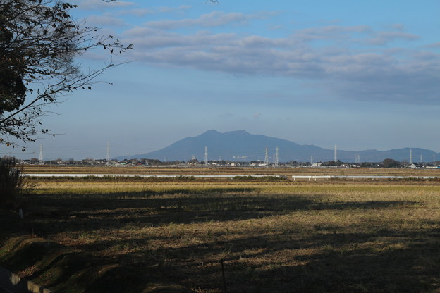 筑波山_散歩 D7409