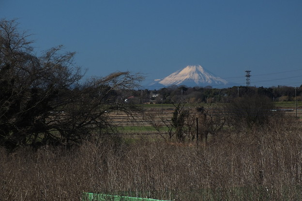 Photos: 富士山_風景 F4283