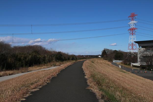 堤防_散歩道 D7520