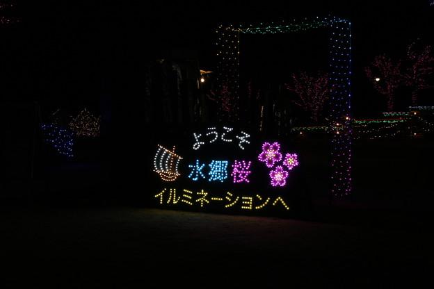 ミネーション_霞ヶ浦 D7605