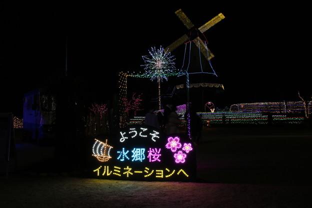 イルミネーション_霞ヶ浦 D7607