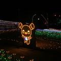 Photos: イルミネーション_霞ヶ浦 D7634