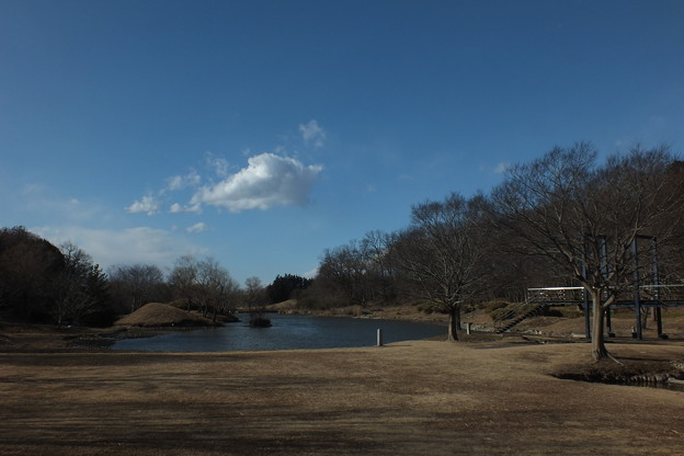 公方公園_古河 F4309