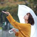 Photos: 優しい雨