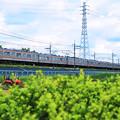 鉄塔と電車[P5241355]