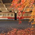 Photos: 東武日光駅構内