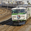 Photos: 185系電車A1編成(トリミング版)