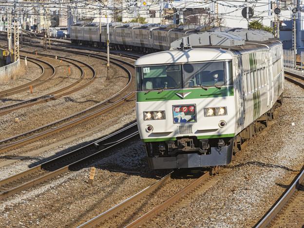185系電車A1編成