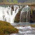 Photos: 滝の前の橋