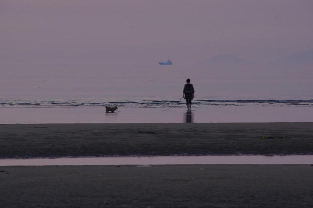 写真: 海にとけこむ