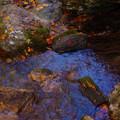 落ち葉の渓谷2