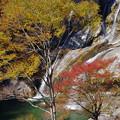 アメガエリの滝1