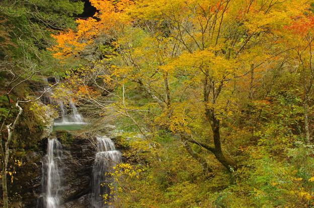 秋の滝歌2