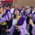 Photos: 良き仲間