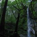 降水後の滝