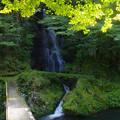 Photos: 滝への橋