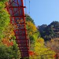 Photos: 赤い吊り橋