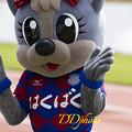 写真: 5月3日甲府山口戦_フォーレちゃん