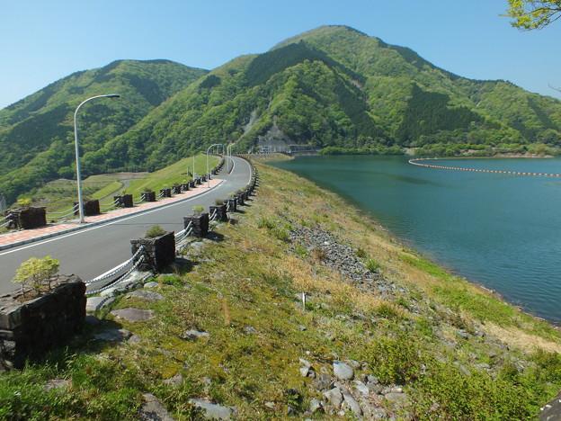 新緑の丹沢湖