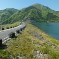 写真: 新緑の丹沢湖